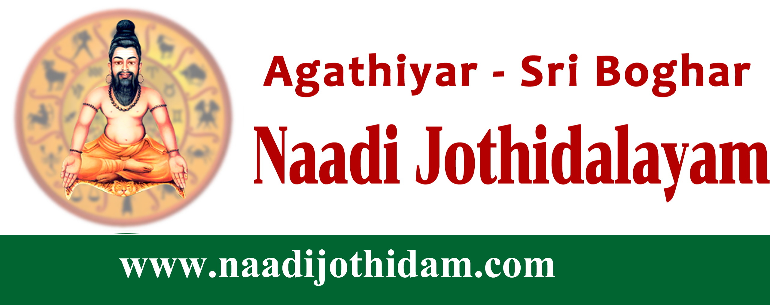 nadi astrologer in chennai